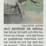 nils_holgersson